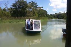Zipline y Tour del Canal de Tortuguero desde Limón