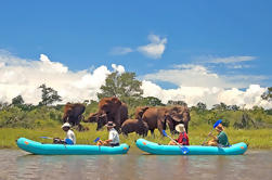 Safari de canoa de Upper Zambezi de día completo desde las Cataratas Victoria