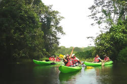 Kayak Tours at Gamboa