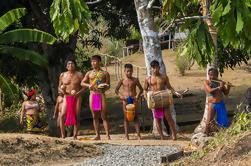 Tour de la Comunidad Indígena Embera desde la Ciudad de Panamá