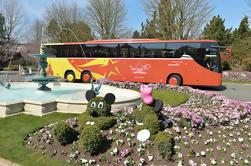 Traslado en autobús: Disneyland Paris al aeropuerto