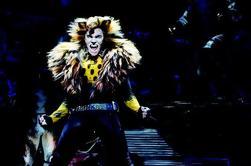CATS en Broadway