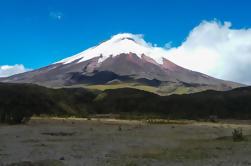 Excursión privada de un día a Cotopaxi desde Quito