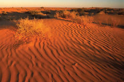 Desierto de Simpson Desert 4WD Expedition de Adelaide a Alice Springs