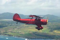 Vuelo del biplano del vintage sobre Kauai