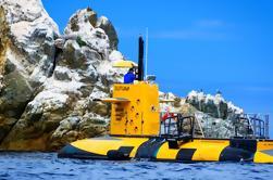 Submarino Submarino de la Isla Catalina