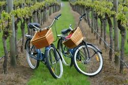 Mattituck New York Guided Farm and Vineyard Bike Tour
