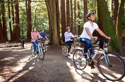Tour independiente de la bici de San Francisco con el alquiler