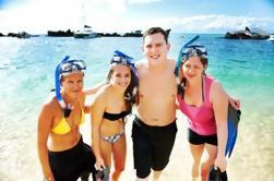 Excursión de un día a Snorkel y Sand Boarding de 4 horas en Moreton Island desde Brisbane