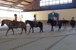 Postojna Cueva y Prestranek Estate Tour con Degustación y Equitación opcional