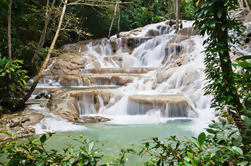 Jamaica Combo Tour: Dunn's River Falls y Bob Marley's Nine Mile