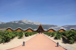Bodegas Rioja Tour de San Sebastián con Almuerzo