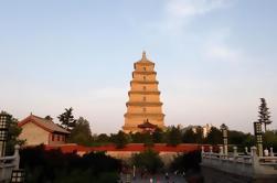 Halbtägige private Stadtrundfahrt von Shaanxi History Museum und Big Wild Goose Pagode