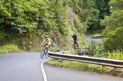 Oahu Aventura en bicicleta de descenso con una caminata opcional