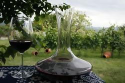 1 día de degustación de vino en la región de Kakheti
