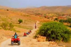 Excursion d'une demi- journée à Camel et Quad à Marrakech
