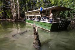 Excursão de um dia de aventuras de Coccodile de Hartley de Palm Cove