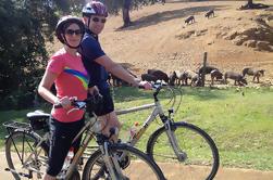 Tour de Bicicleta de Campo en Sevilla