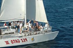 Sunset Party Cruise en Los Cabos a bordo del Pez Ga