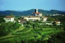 Excursión de un día a Goriska Brda con degustaciones de aceite y vino de Ljubljana