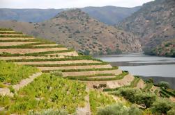 Tour de lujo en el valle del Duero