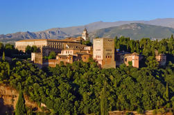 Alhambra Tour and Private Sightseeing Flight