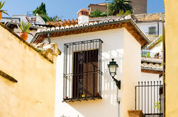 Historical Granada Sightseeing Tour