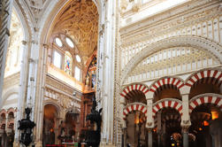Excursión de un día a Córdoba desde Granada