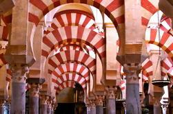 Tour Privado: Excursión de un día a Córdoba desde Granada