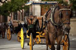 Paseo privado de caballos y carruajes de Sevilla