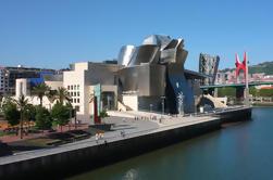 Tour Privado: Museo Guggenheim de Bilbao