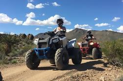 Excursión de medio día de Hidden Valley ATV desde Las Vegas