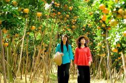 My Tho e Ben Tre Viagem de um dia de Ho Chi Minh City