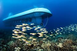 Kona Submarine Adventure y Isla Breeze Luau