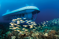 Kona Submarine Adventure y Royal Kona Resort Luau