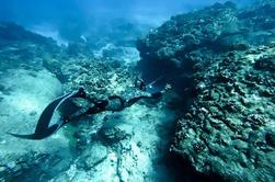 Pesca submarina en el lado oeste de Hawai