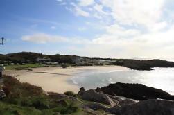 Tour de día completo del Anillo de Kerry más Lagos de Killarney y Parque Nacional