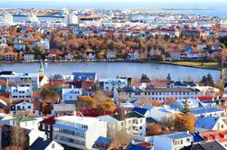 Excursión privada en Reykjavik