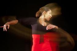 Flamenco Workshop in Malaga