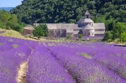 Small Group Provence en Lavendel Museum Day Trip from Avignon