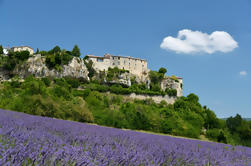 Provence Lavendel Small Group Half-Day Trip