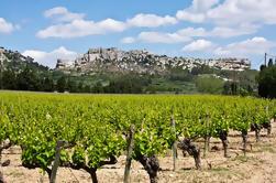 Les Baux de Provence Tour de Avignon: Vino provenzal y aceite de oliva