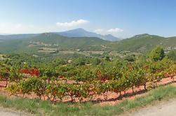 Ruta del vino del Valle de Ródano desde Avignon