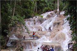 Destacados de Ocho Rios y Tour de Dunn's River Falls desde Runaway Bay