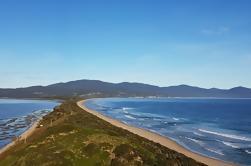 Excursión de un día en grupo pequeño de Hobart a Bruny Island