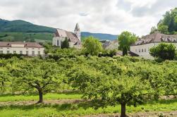 Bosque de Viena y Mayerling Excursión de medio día