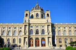 Excursión de ida y vuelta en la ciudad de Viena