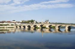 Excursión en bicicleta por el Valle del Loira desde París