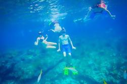 Freeport Reef Snorkeling Aventura con playa de vacaciones y compras
