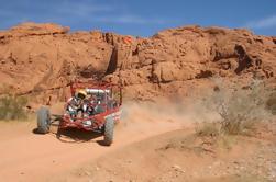 Valle del Fuego Tour ATV de Las Vegas